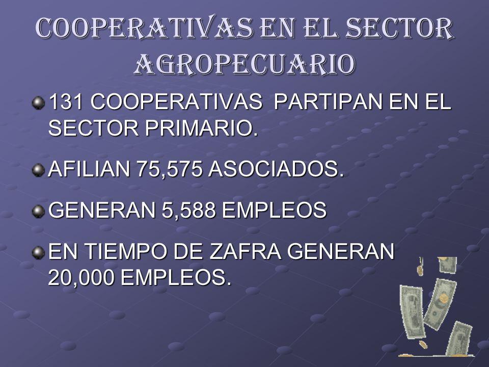 COOPERATIVAS EN EL SECTOR AGROPECUARIO