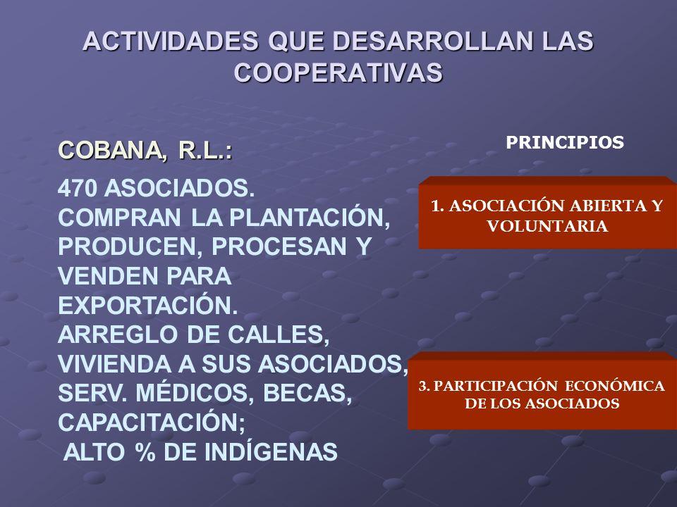 ACTIVIDADES QUE DESARROLLAN LAS COOPERATIVAS