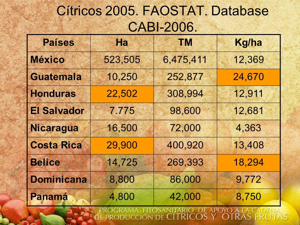 Cítricos 2005. FAOSTAT. Database CABI-2006.