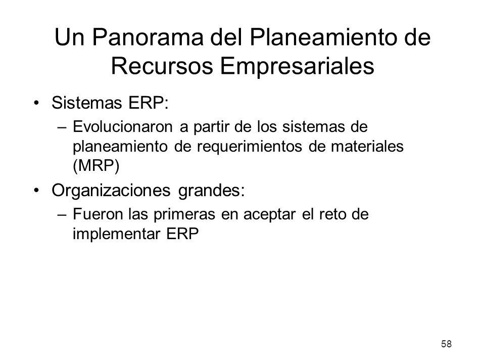 Un Panorama del Planeamiento de Recursos Empresariales