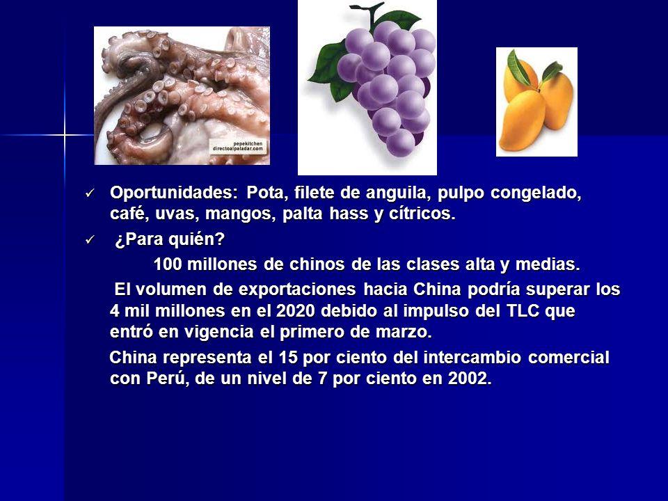 Oportunidades: Pota, filete de anguila, pulpo congelado, café, uvas, mangos, palta hass y cítricos.