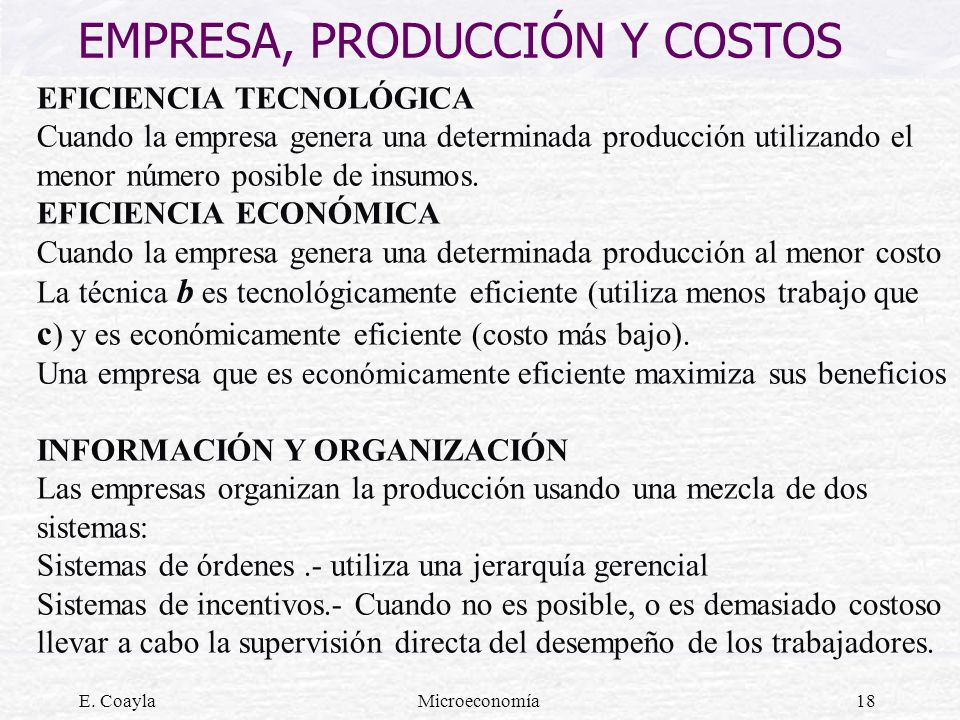 EMPRESA, PRODUCCIÓN Y COSTOS