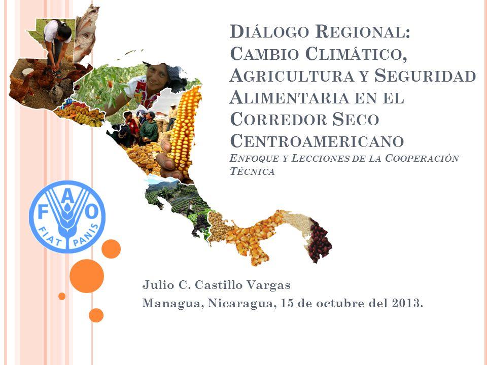 Julio C. Castillo Vargas Managua, Nicaragua, 15 de octubre del 2013.