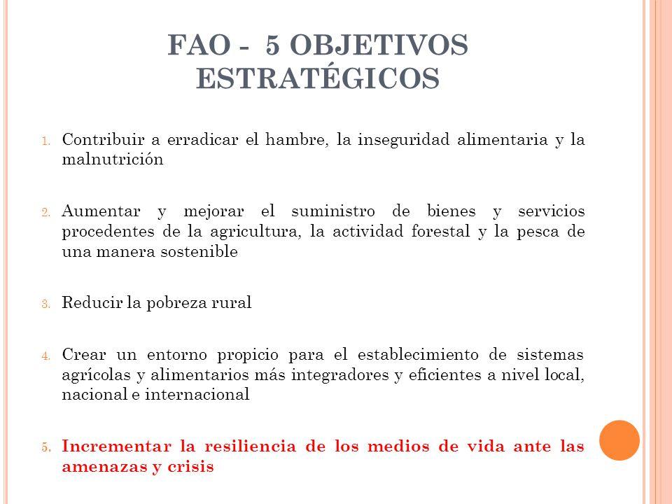 FAO - 5 OBJETIVOS ESTRATÉGICOS