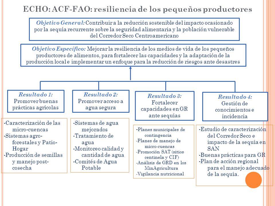 ECHO: ACF-FAO: resiliencia de los pequeños productores