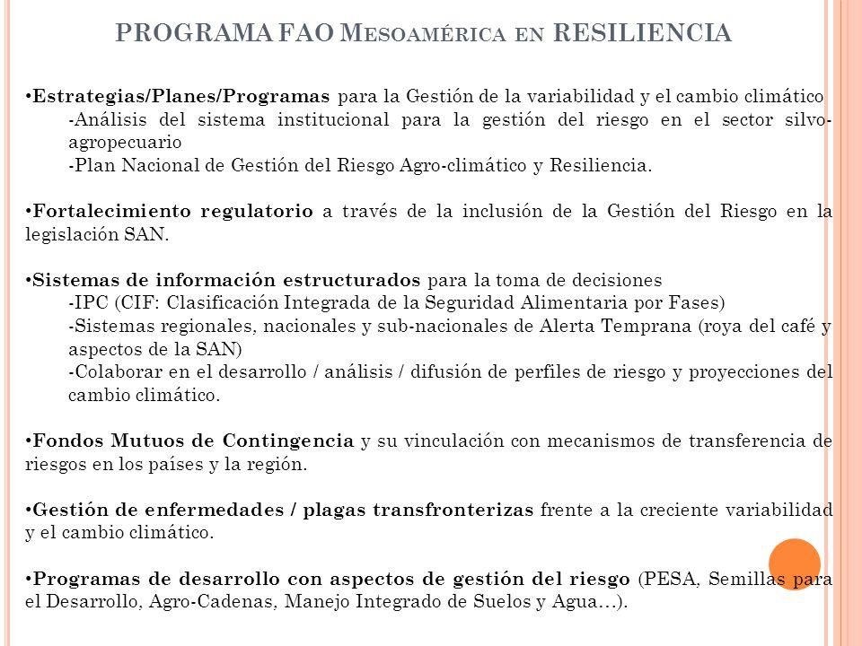 PROGRAMA FAO Mesoamérica en RESILIENCIA