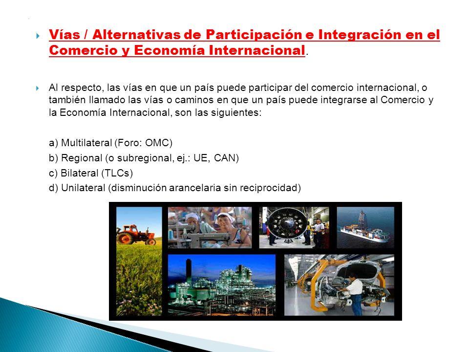 . Vías / Alternativas de Participación e Integración en el Comercio y Economía Internacional.