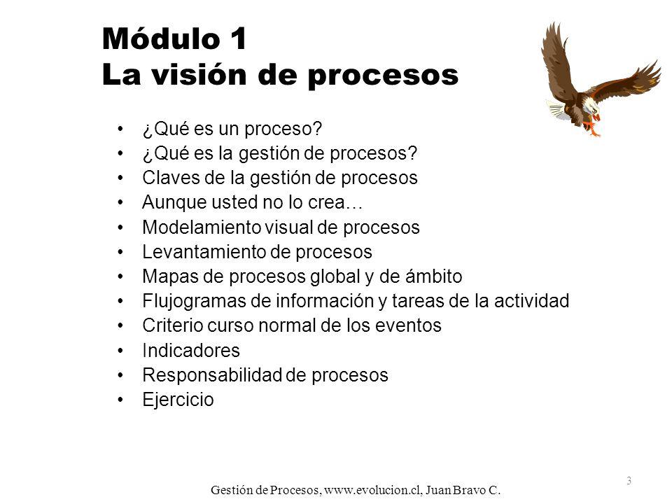 Módulo 1 La visión de procesos