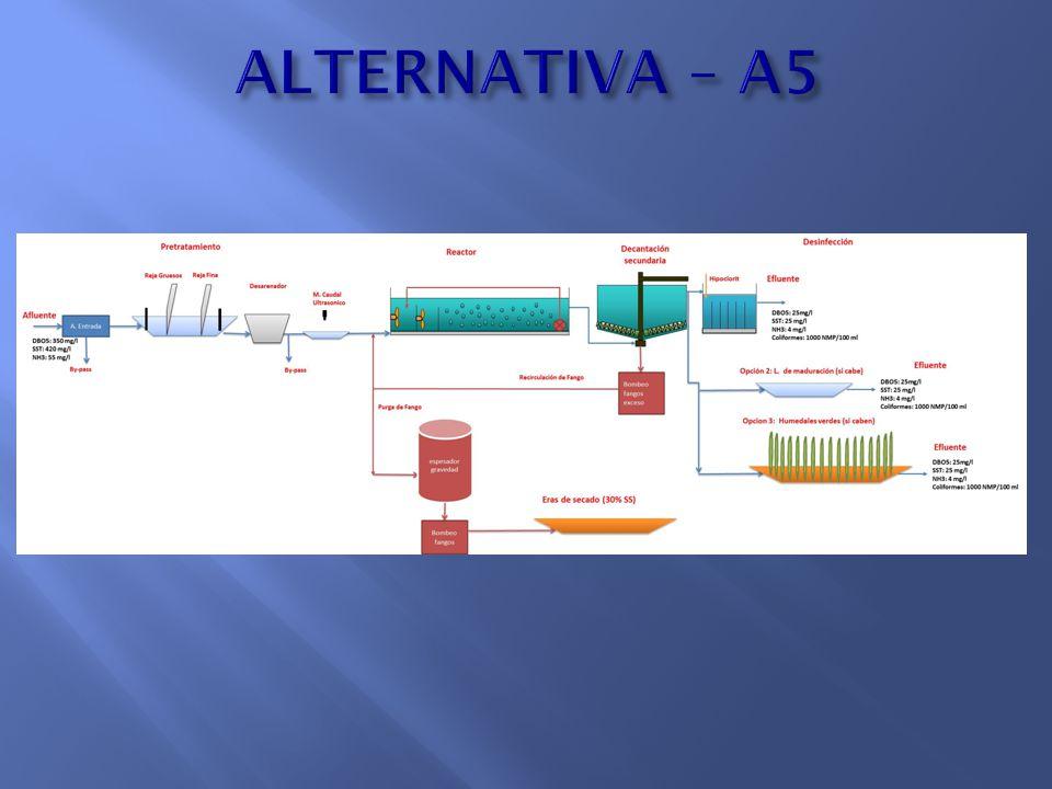 ALTERNATIVA – A5