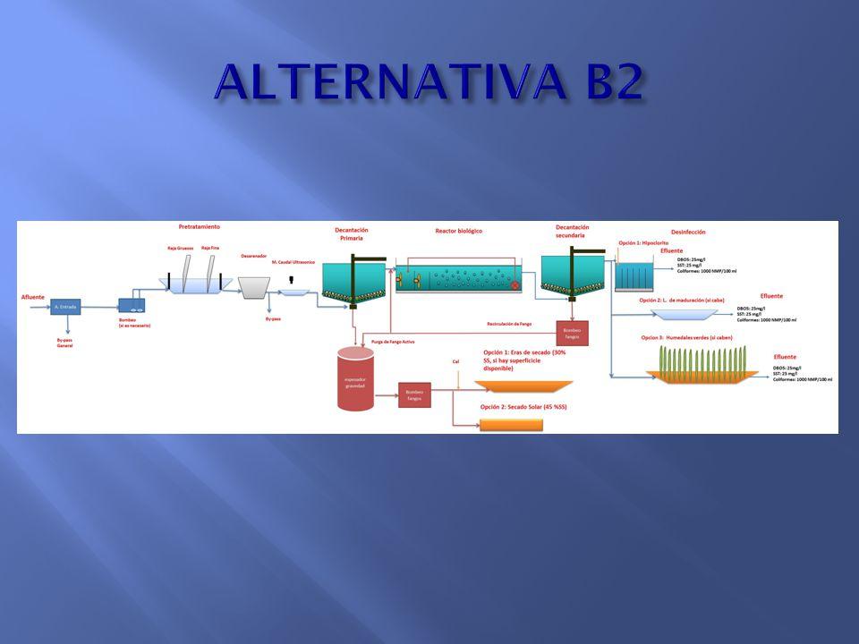 ALTERNATIVA B2