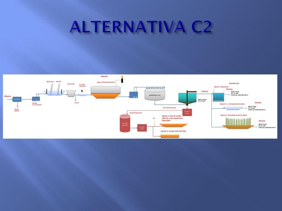 ALTERNATIVA C2