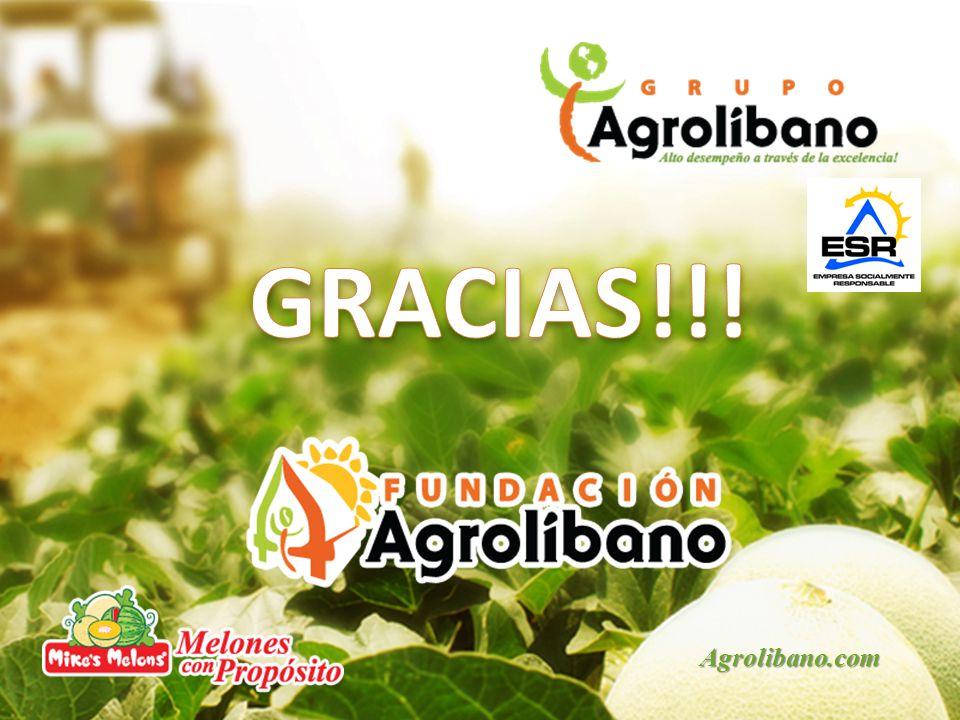 GRACIAS!!! Agrolibano.com