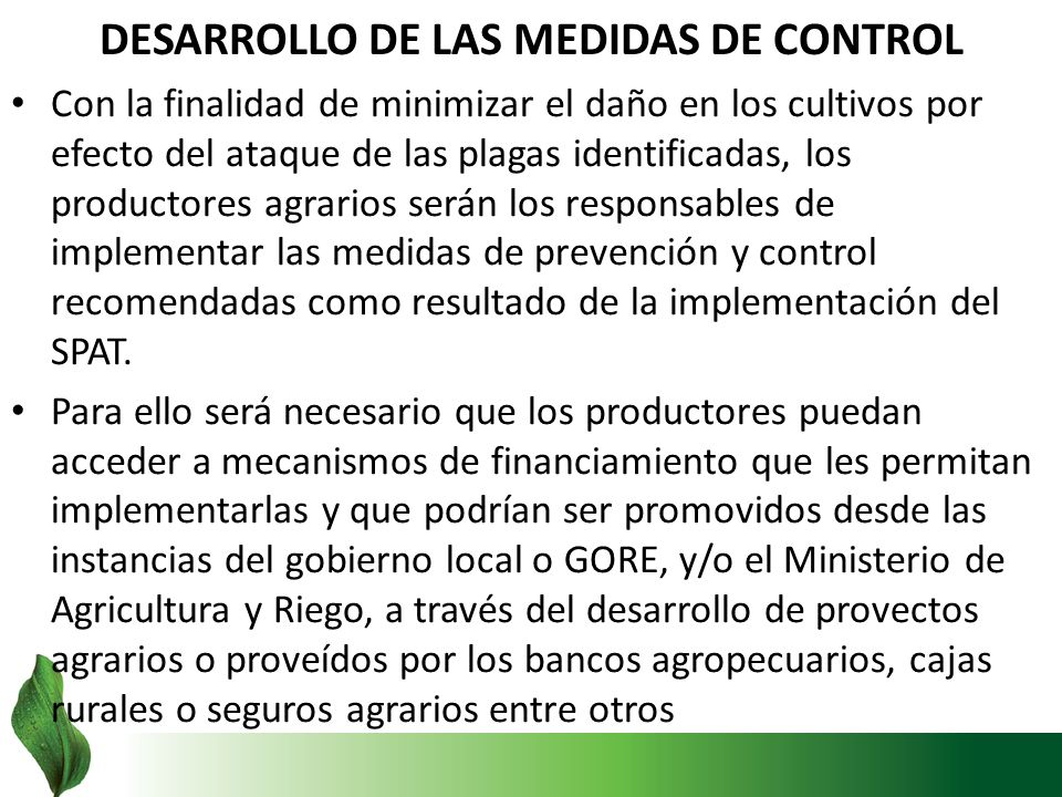 DESARROLLO DE LAS MEDIDAS DE CONTROL