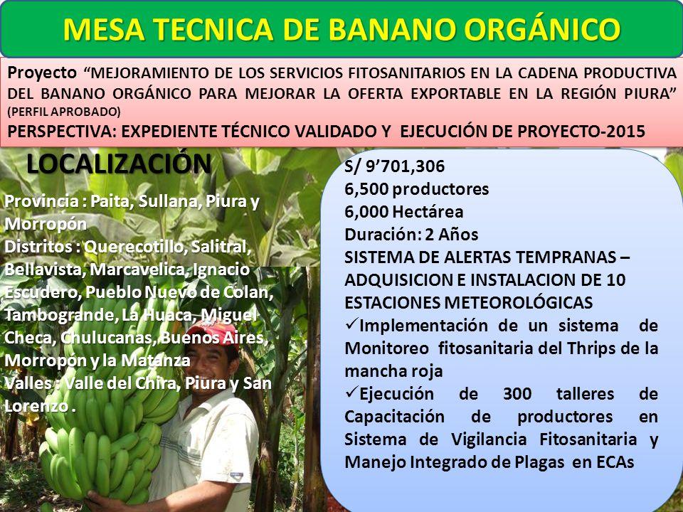 MESA TECNICA DE BANANO ORGÁNICO