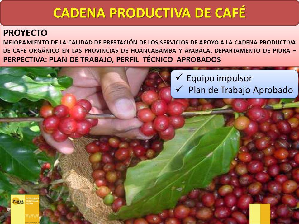 CADENA PRODUCTIVA DE CAFÉ