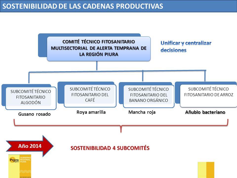SOSTENIBILIDAD DE LAS CADENAS PRODUCTIVAS