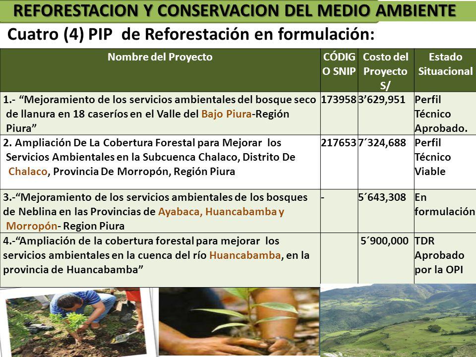 REFORESTACION Y CONSERVACION DEL MEDIO AMBIENTE