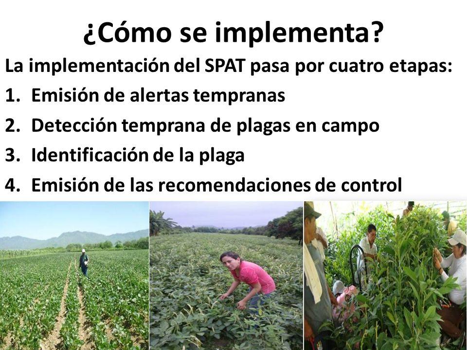 ¿Cómo se implementa La implementación del SPAT pasa por cuatro etapas: Emisión de alertas tempranas.