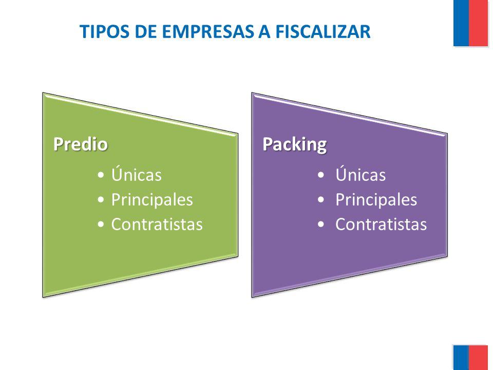 TIPOS DE EMPRESAS A FISCALIZAR