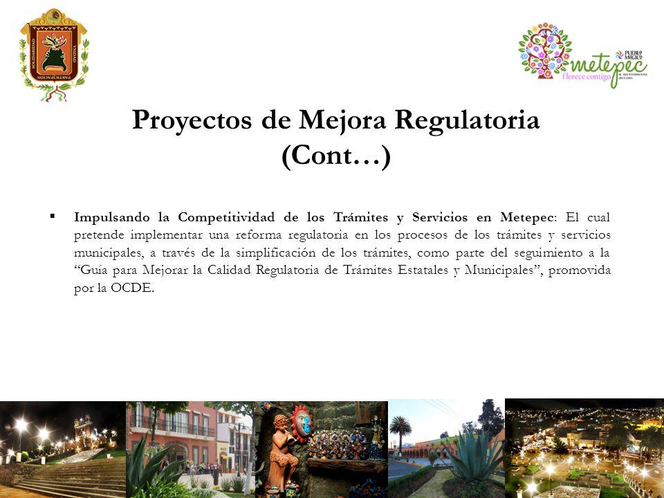 Proyectos de Mejora Regulatoria (Cont…)