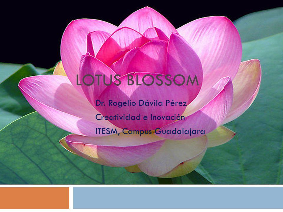 Lotus Blossom Dr. Rogelio Dávila Pérez Creatividad e Inovación