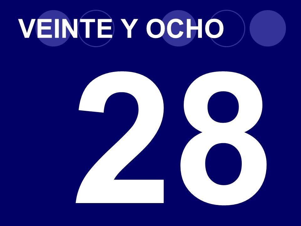 VEINTE Y OCHO 28