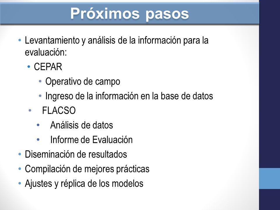 Próximos pasos Levantamiento y análisis de la información para la evaluación: CEPAR. Operativo de campo.
