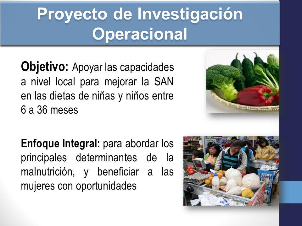 Proyecto de Investigación Operacional