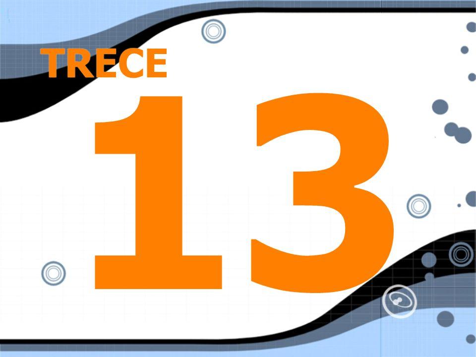 TRECE 13