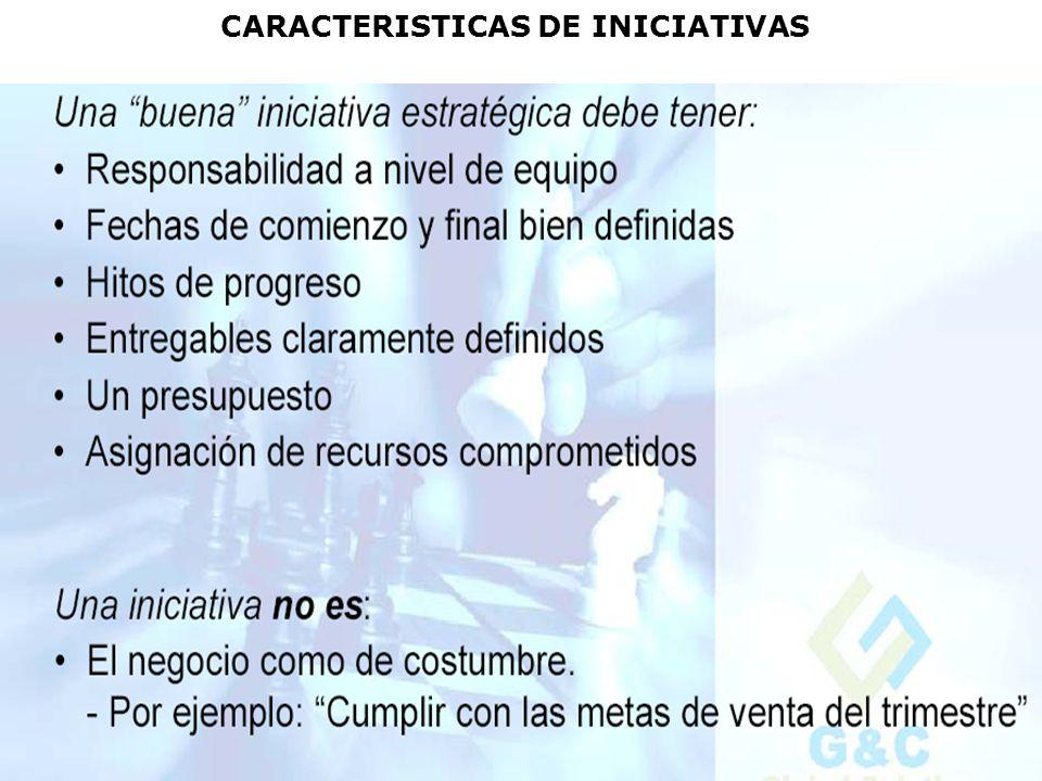 CARACTERISTICAS DE INICIATIVAS