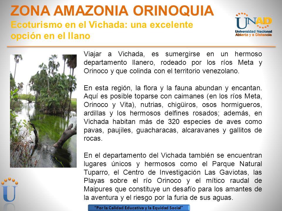 ZONA AMAZONIA ORINOQUIA Ecoturismo en el Vichada: una excelente opción en el llano