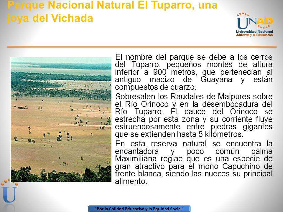 Parque Nacional Natural El Tuparro, una joya del Vichada