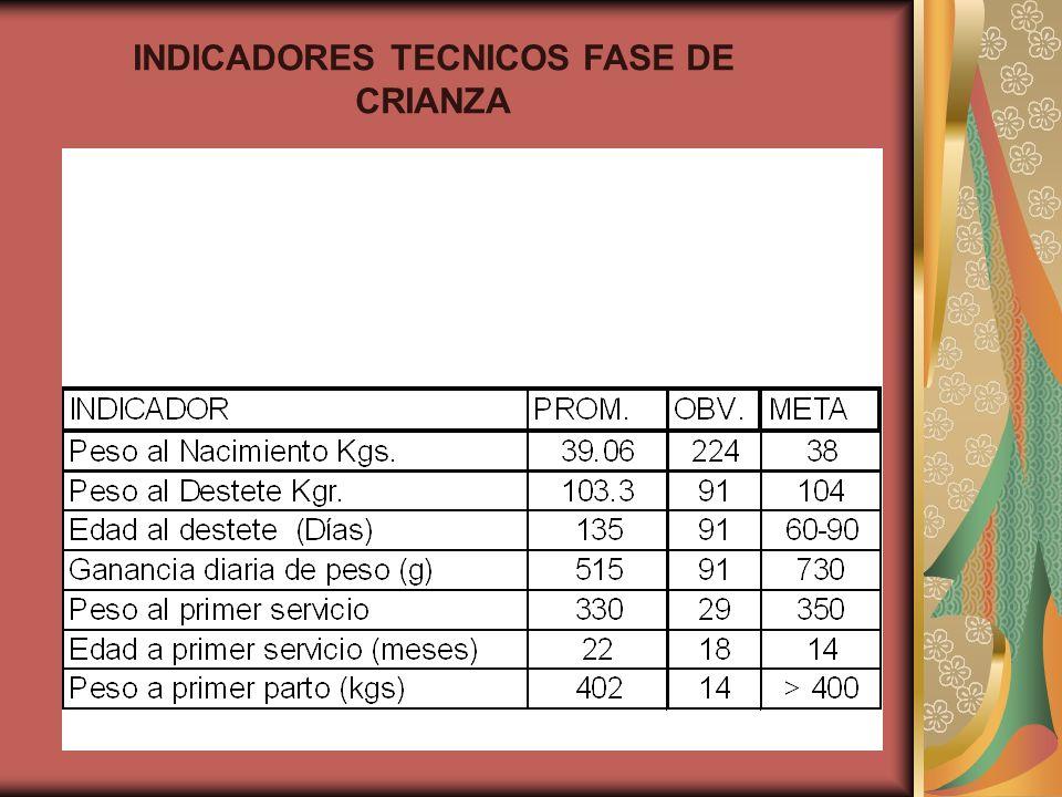 INDICADORES TECNICOS FASE DE