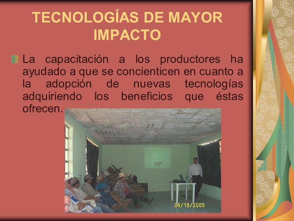 TECNOLOGÍAS DE MAYOR IMPACTO