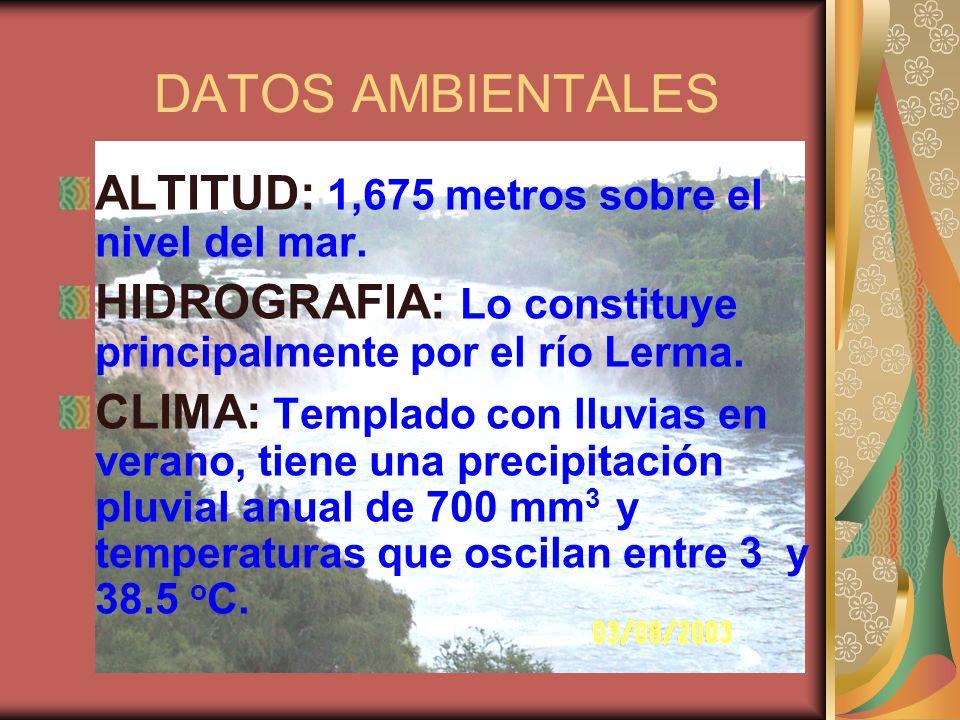 DATOS AMBIENTALES ALTITUD: 1,675 metros sobre el nivel del mar.