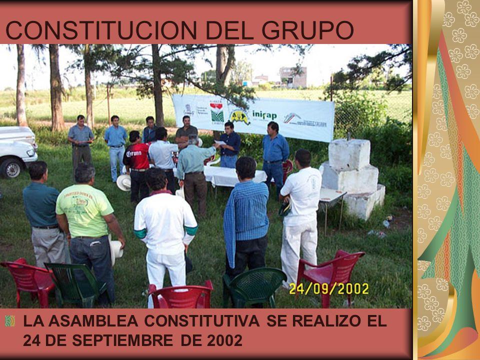 CONSTITUCION DEL GRUPO
