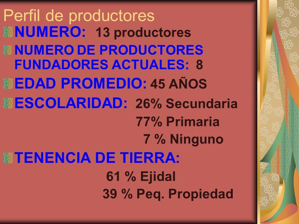 Perfil de productores NUMERO: 13 productores EDAD PROMEDIO: 45 AÑOS