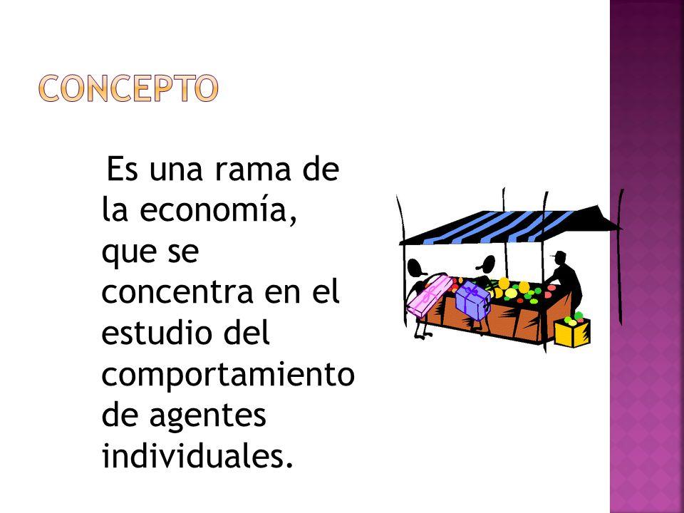 CONCEPTO Es una rama de la economía, que se concentra en el estudio del comportamiento de agentes individuales.