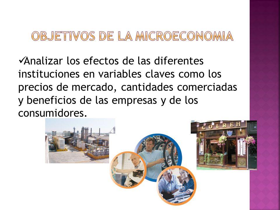 OBJETIVOS DE LA MICROECONOMIA