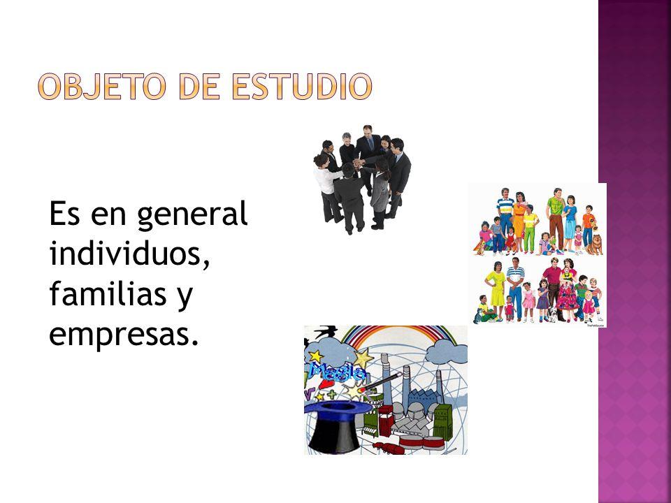 OBJETO DE ESTUDIO Es en general individuos, familias y empresas.