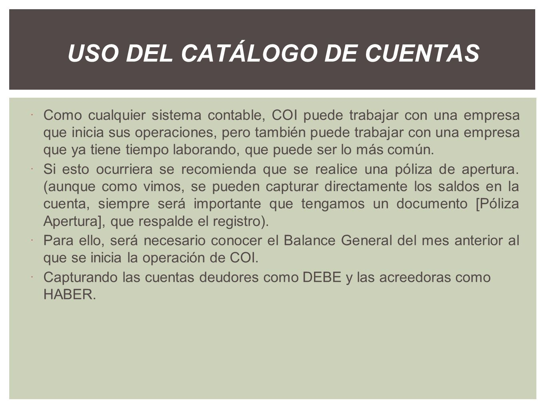USO DEL CATÁLOGO DE CUENTAS