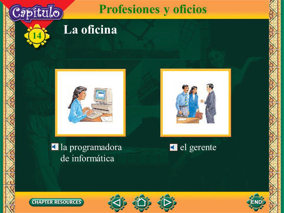 Profesiones y oficios La oficina la programadora de informática