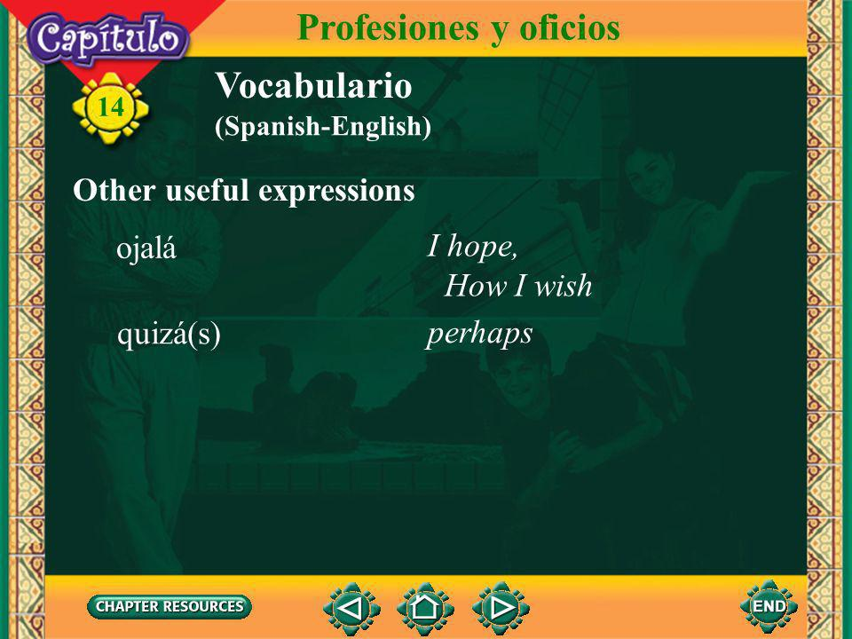 Profesiones y oficios Vocabulario Other useful expressions ojalá