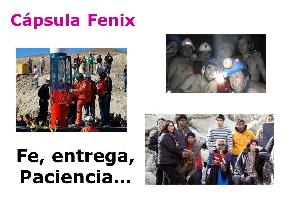 Cápsula Fenix Fe, entrega, Paciencia…