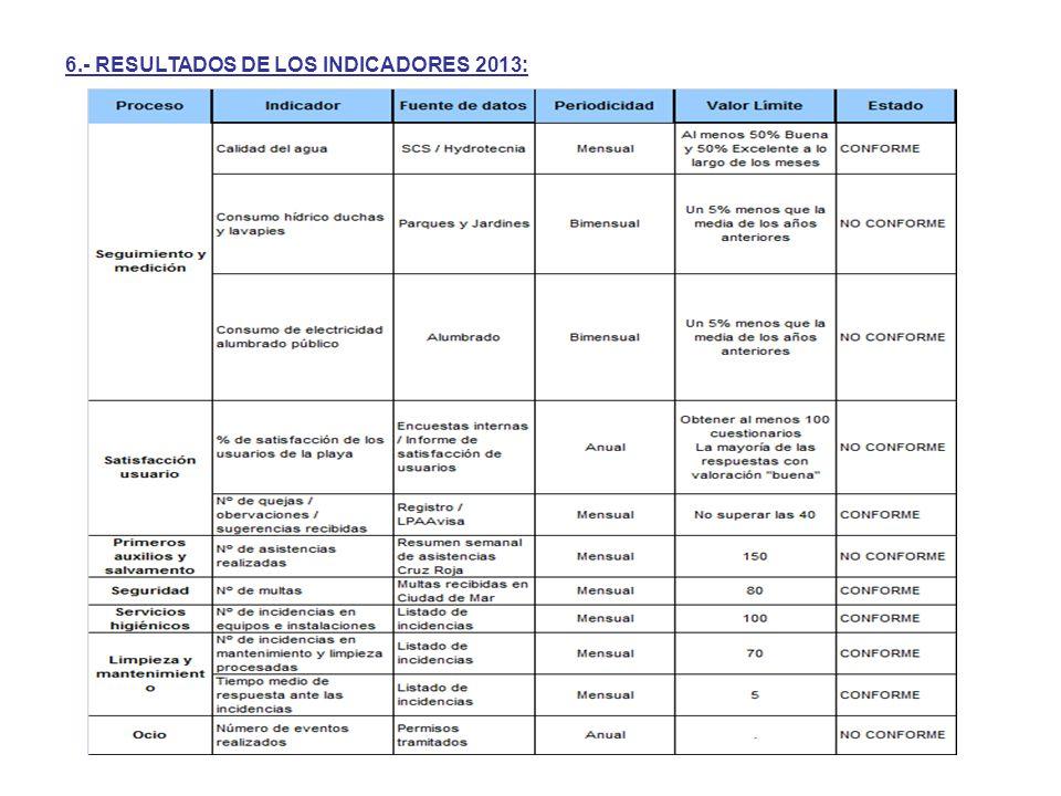 6.- RESULTADOS DE LOS INDICADORES 2013: