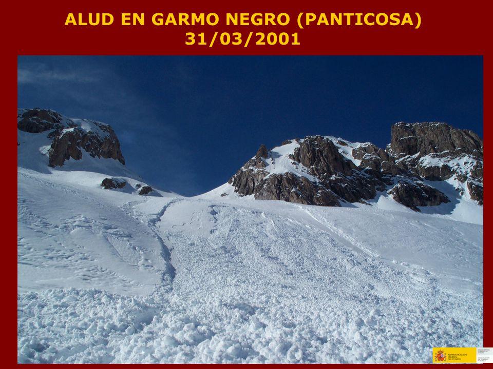 ALUD EN GARMO NEGRO (PANTICOSA) 31/03/2001
