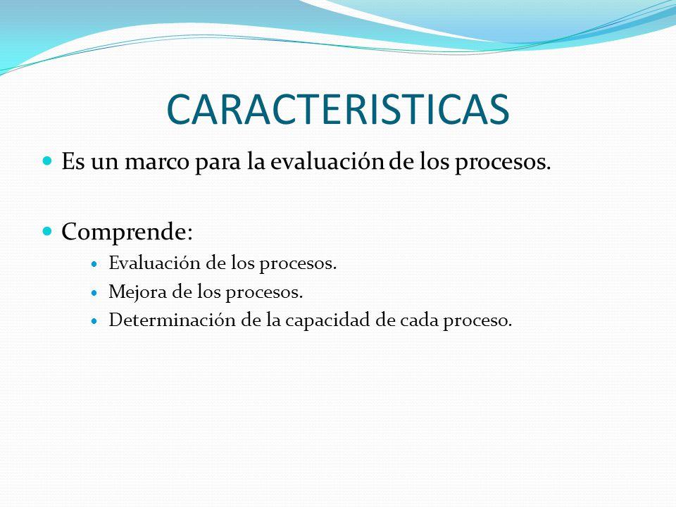 CARACTERISTICAS Es un marco para la evaluación de los procesos.
