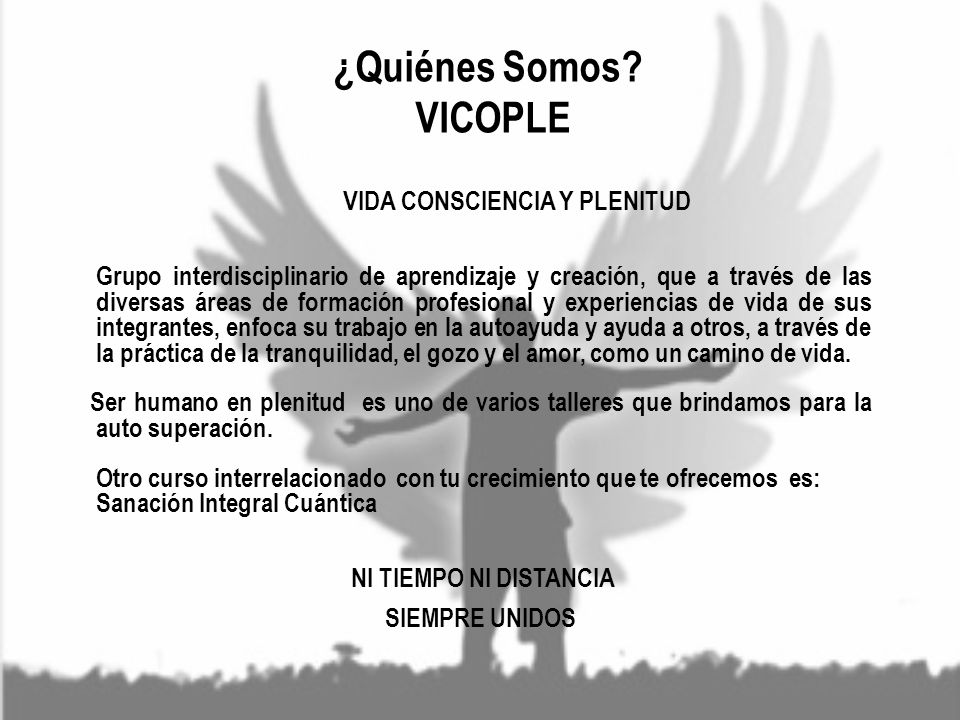 ¿Quiénes Somos VICOPLE