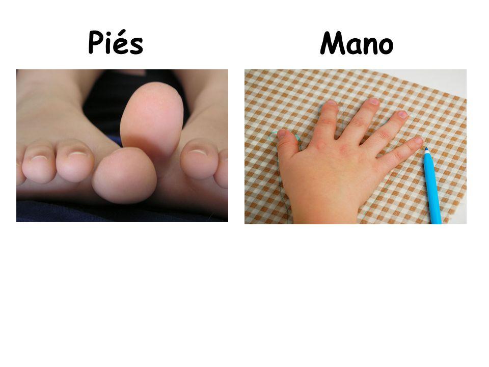 Piés Mano