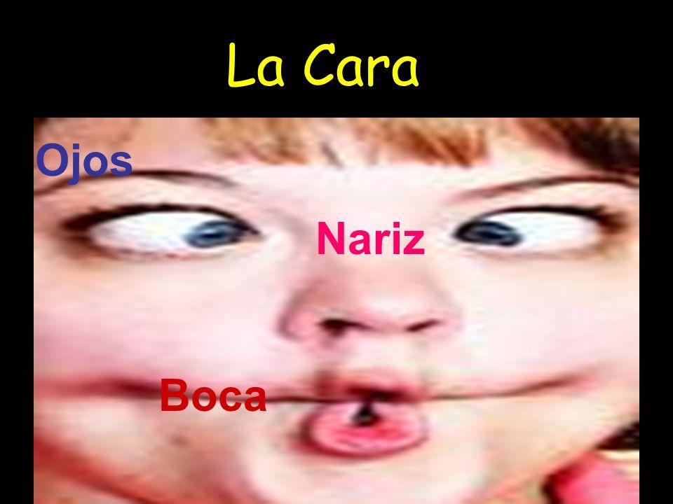La Cara Ojos Nariz Boca